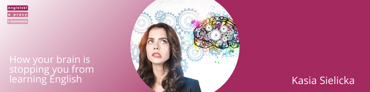 your brain blog